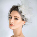 European Princess Pearl Crystal Gauze Bridal Fascinator Hair Accessories Wedding Dress Prom Large Hat Face Veils